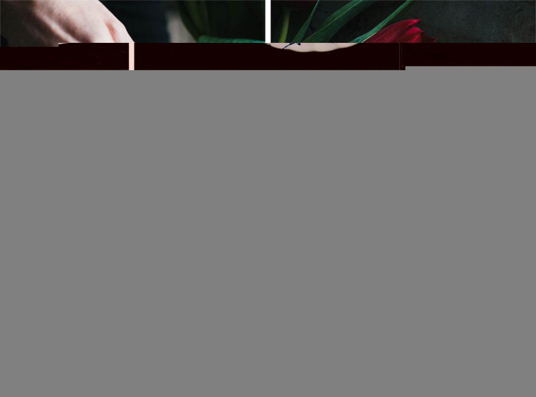 Apple Loaf Cake Vanilla Tofu Custard Vegan Gluten